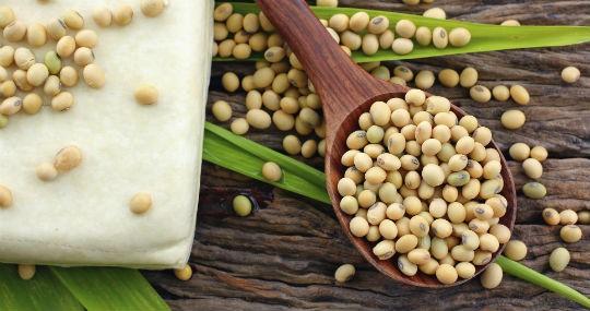 0bb55be9d Alimentos ricos em proteínas  conheça 10 deles e saiba como usá-los ...