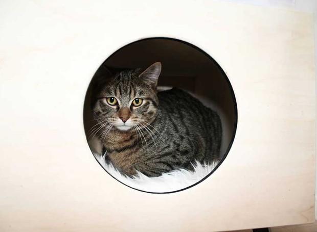 casinha-de-gato-com-design-2 (Foto: Reprodução)