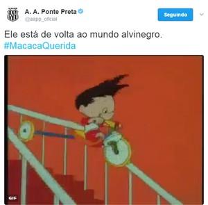 Ponte Preta anuncia retorno de Fernando Bob com GIF (Foto: Reprodução / Twitter)