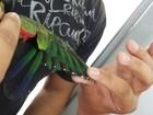 Homem corta asas de papagaios  com tesoura e é multado em R$ 6 mil