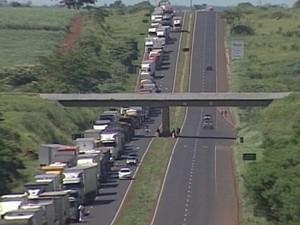 rodovia BR-153 paralisação caminhoneiros Araporã Itumbiara (Foto: Reprodução/ TV Integração)