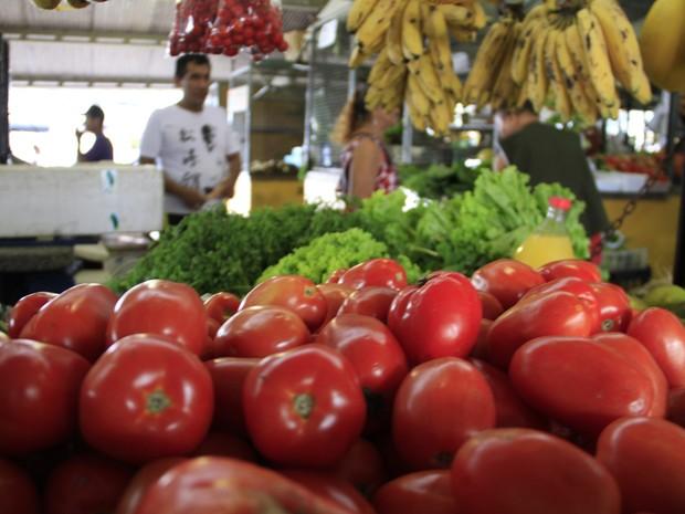 Tomate apresentou reduação de 24,30% na Ceasa/PA. (Foto: Paula Sampaio/O Liberal)
