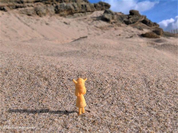 Bióloga transforma em arte lixo que encontra nas praias (Foto: Divulgação)