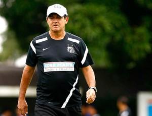 Muricy Ramalho treino Santos (Foto: Ricardo Saibun / Divulgação Santos FC)