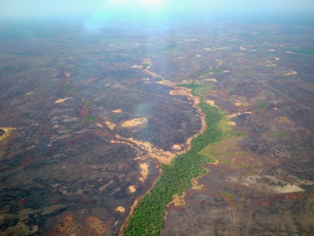 Parque Nacional Campos Amazônicos (Foto: Prevfogo AM / Divulgação)