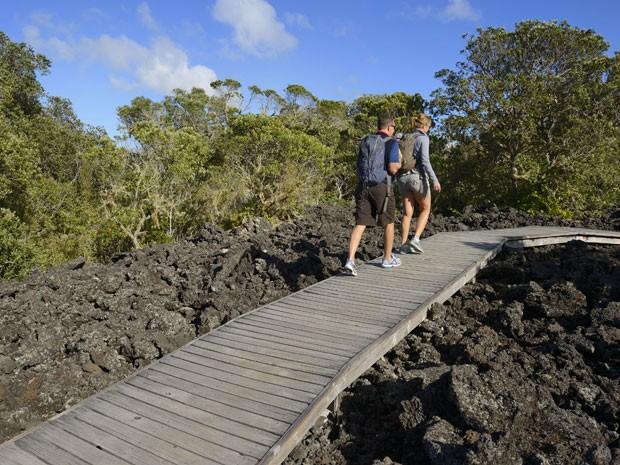 Rangitoto Island, ilha vulcânica na Nova Zelândia (Foto: Guiziou Franck / Hemis.Fr/AFP)