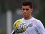 TE: Santos e Figueirense se enfrentam na Vila Belmiro neste domingo