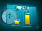 Mortes por dengue chegam a 19 no Rio em 2015 e preocupam secretaria