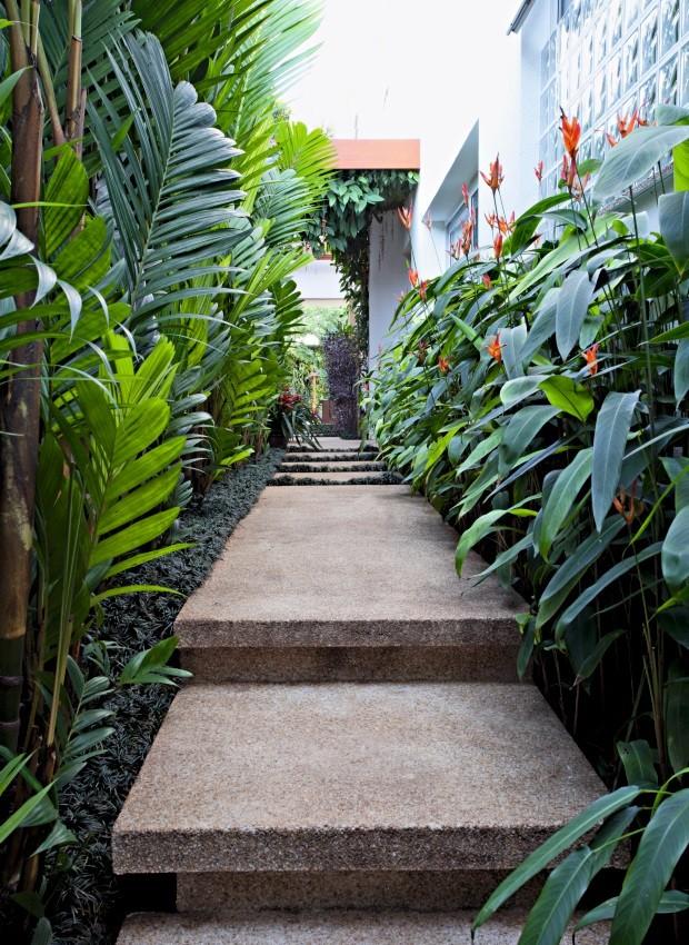 Corredor com espécies que preferem ser cultivadas em locais de meia-sombra, caso da palmeira-pinanga (Foto: Pedro Abude / Editora Globo)