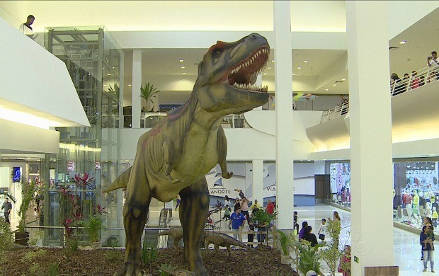 Manaus é a última cidade a receber a exposição (Foto: Amazonas TV)