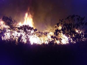 Fogo na Chapada Diamantina. (Foto: Janio Rocha/ Brigada de Resgate Ambiental de Lençóis)