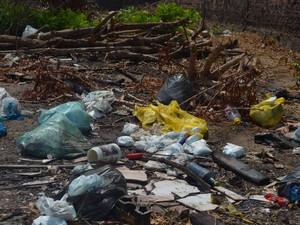 Segundo a Divisa, são mais de 3 mil terrenos abandonados propícios  (Foto: Karla Lima/G1)