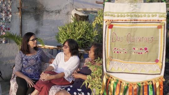 Projeto cria hortas orgânicas em casas do Santo Antônio Além do Carmo