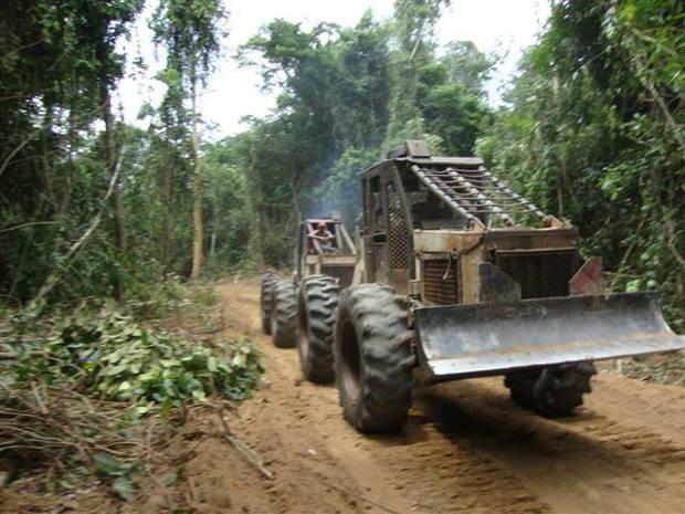 Quatro máquinas foram apreendidas pelo Ibama em Anapu (Foto: Divulgação / Incra)