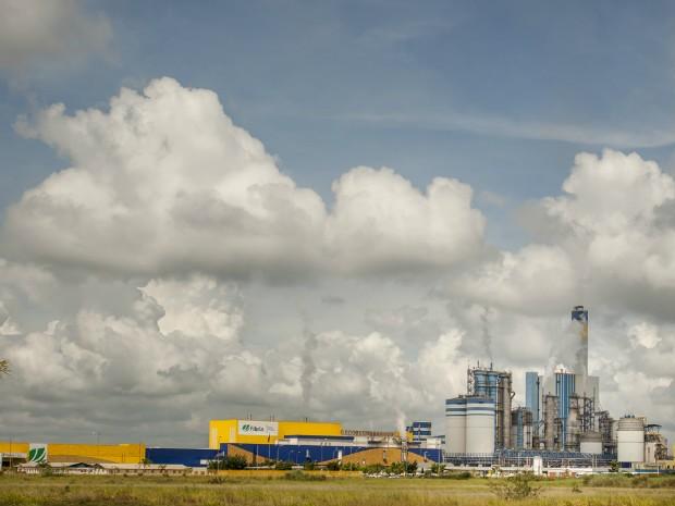 Com investimento de R$ 7,7 bilhões, Fibria vai ampliar capacidade de produção para 3 milhões de toneladas (Foto: Divulgação/Fibria)