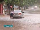 Volume de chuva em Campo Grande alcança o esperado para o mês todo