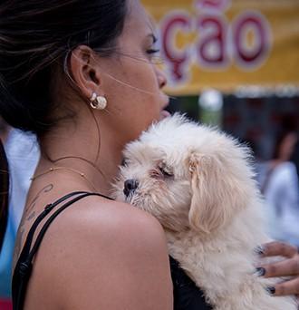 Triagem é importante para assegurar o sucesso da adoção (Foto: Rodrigo Oliveto)