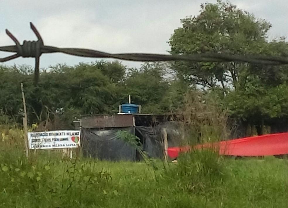 Sem-teto montam acampamento no Pinheirinho (Foto: Kadu Reis/TV Vanguarda)