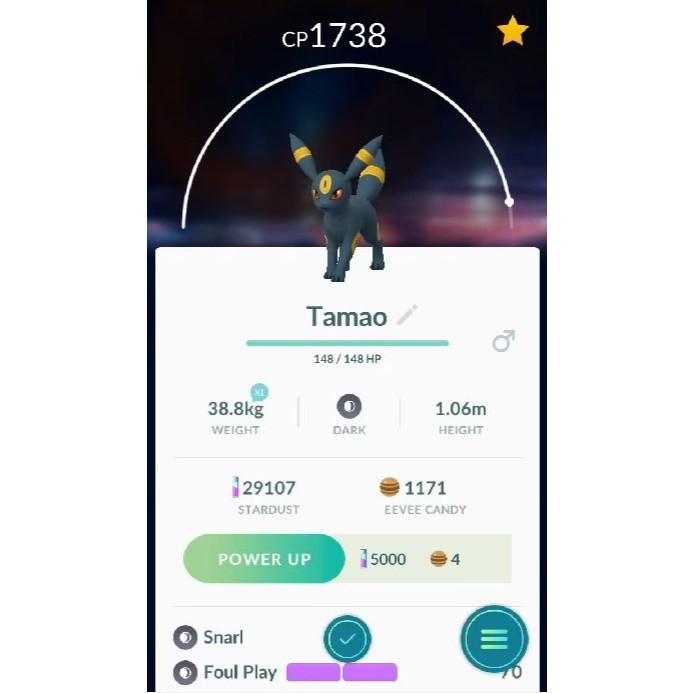 Nomeie seu Eevee como Tamao para forçar a aparição de Umbreon em Pokémon Go (Foto: Reprodução/Felipe Demartini)