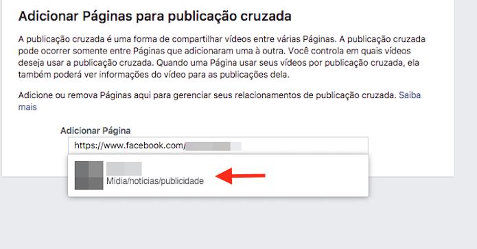 Opção para vincular uma página do Facebook para realizar publicações simultâneas de vídeos (Foto: Reprodução/Marvin Costa)