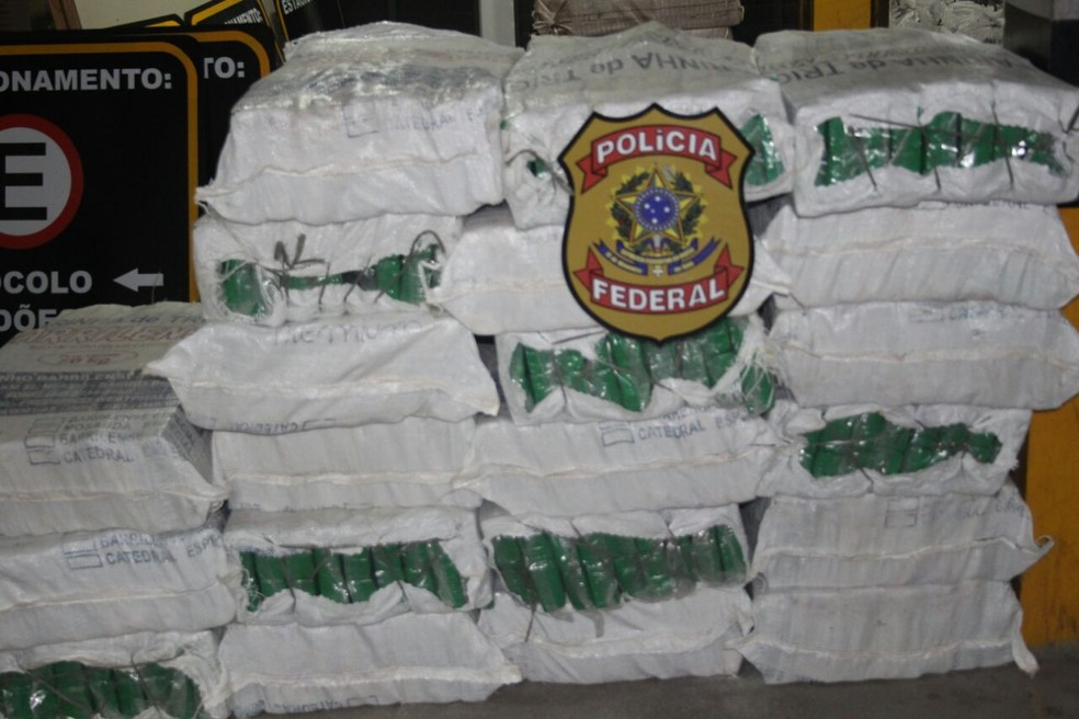 Conforme a polícia, quantidade de droga prensada é maior apreendida no Norte/ Nordeste (Foto: Divulgação/ PF)