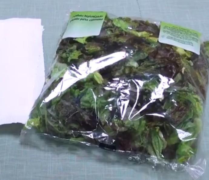 Colocar um papel toalha no saco de alface pode fazer a folha durar mais? Veja o teste (Foto: Reprodução)