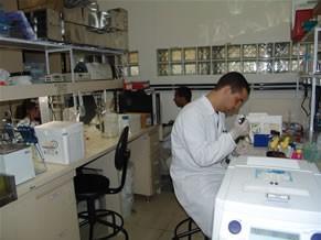Laboratório vacina malária (Foto: Divulgação)