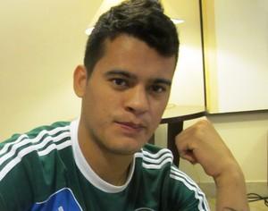 Mendieta Palmeiras (Foto: Marcelo Hazan)