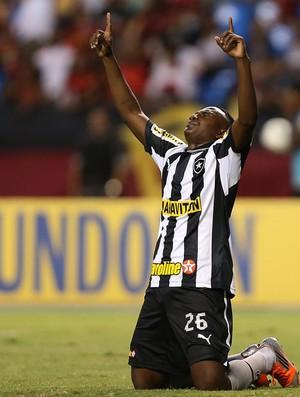 Sassá gol Botafogo x Flamengo (Foto: Satiro Sodré / Ag. Estado)