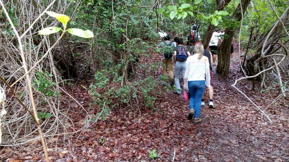 Parque das Dunas tem três trilhas ecológicas. Elas haviam sido suspensas após PM descobrir acampamento de fugitivos de penitenciária na mata (Foto: Divulgação / Idema)