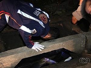 Homem é encontrado em chamas dentro de bueiro em Goiânia, Goiás (Foto: Reprodução/TV Anhanguera)