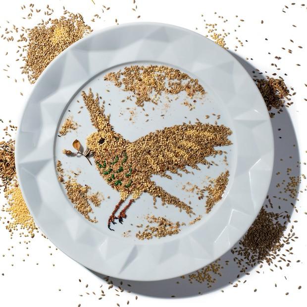 Esqueça o arroz integral e a quinoa e introduza à sua dieta o painço. Primodo alpiste e único cereal compH alcalino, ele é o superfood do momento – ajuda da digestão à produção de colágeno (Foto: Flavio Battaiola. Arte: Raoni Felix)