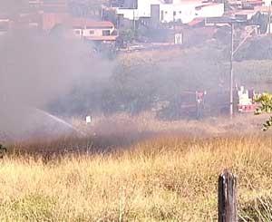 Incêndio destui área de preservação (Foto: Reprodução/TV Integração)