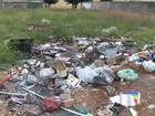 São José notifica mais de 1.500 donos de terrenos por abandono