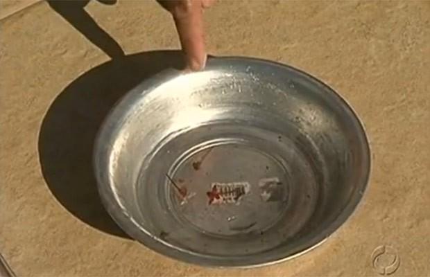 Morte por dengue serve de alerta aos moradores da região noroeste (Foto: Reprodução)