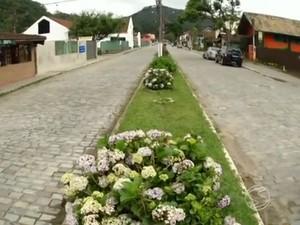 Região de Visconde de Mauá (Foto: Reprodução/TV Rio Sul)