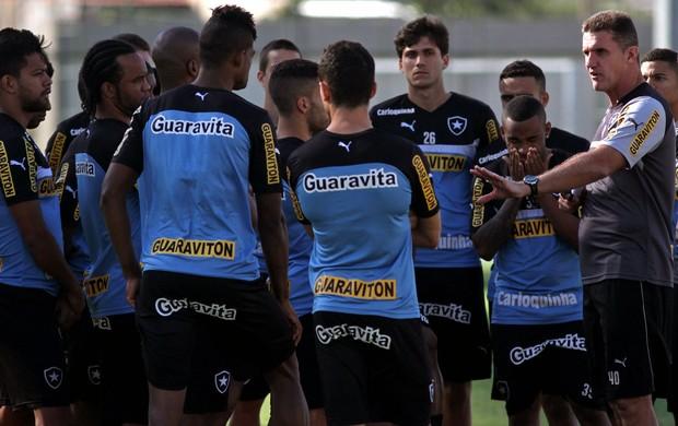 Vagner Mancini treino Botafogo (Foto: Satiro Sodré)