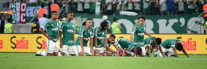 Palmeiras Copa do Brasil final pênaltis (Foto: Marcos Ribolli)