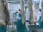 Técnicos russos avaliam frigoríficos de aves, bovinos e suínos do RS
