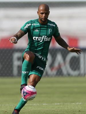 Botafogo-SP x Palmeiras - Felipe Melo