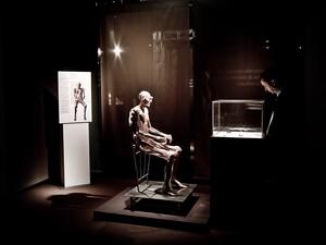 Exposição 'O Fantástico Corpo Humano' chega a Mogi nesta sexta (Foto: Francisco Lorentz/Divulgação)