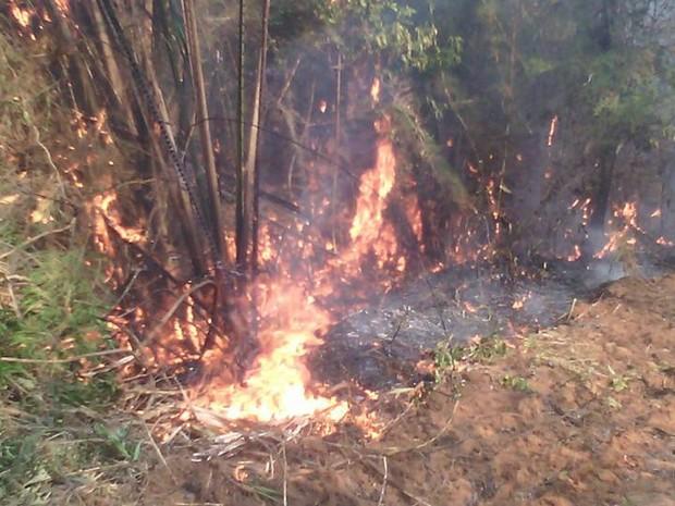 Bombeiros tentam há três dias conter o fogo no local (Foto: Jéssica Lagares)