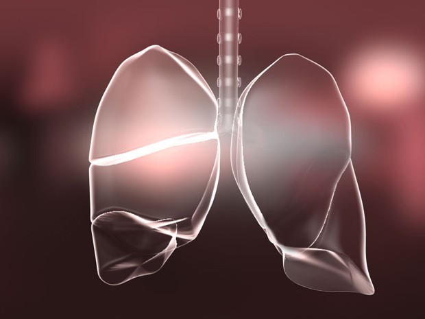 Novo estudo mostra que crianças que 'falta de bactérias' no intestino aumenta risco de asma  (Foto: V. Altounian/Science Translational Medicine)