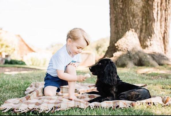 George e o cãozinho protegidos pela sombra (Foto: Reprodução - Instagram)