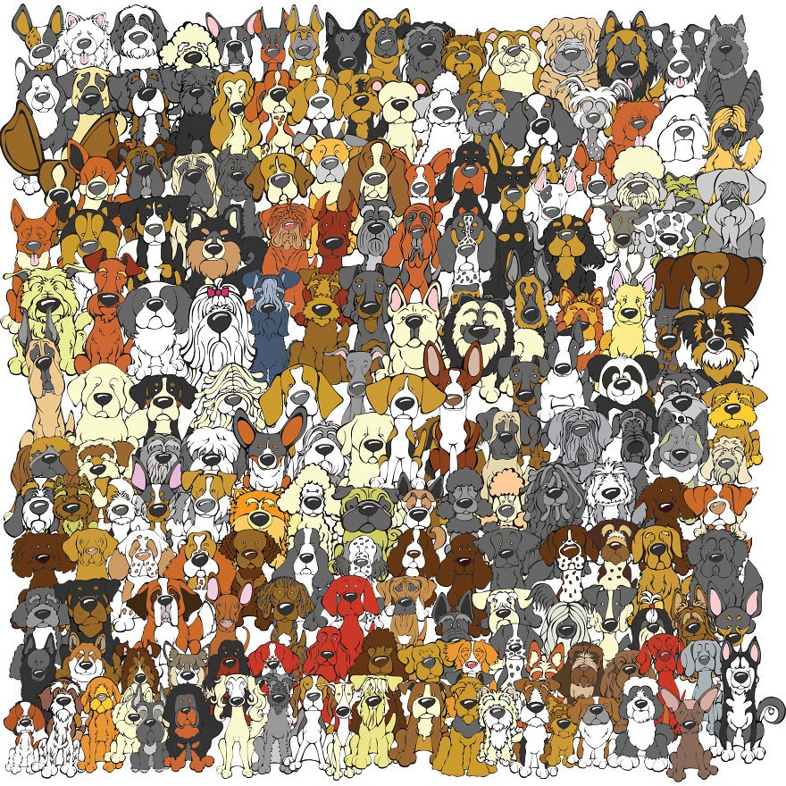 Encontre o panda entre os cachorros (FOTO: REPRODUÇÃO/STE1)