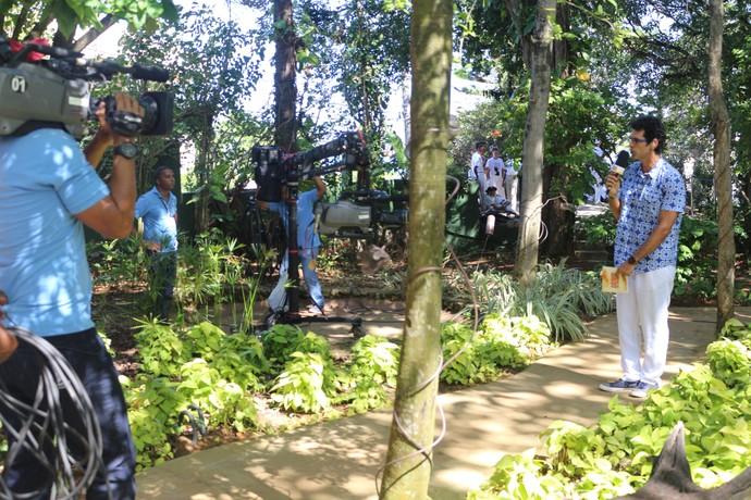 Uma visão geral do quintal da casa, tomada por profissionais (Foto: TV Bahia)