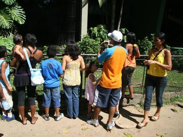 Parque Zoobotânico do Museu Emílio Goeldi, em Belém, recebe em média 200 mil visitantes durante o ano. (Foto: Sidney Oliveira/Amazônia Jornal)