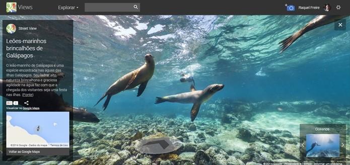 Exploração do mar de Galápagos através do Street View (Foto: Reprodução/Raquel Freire)