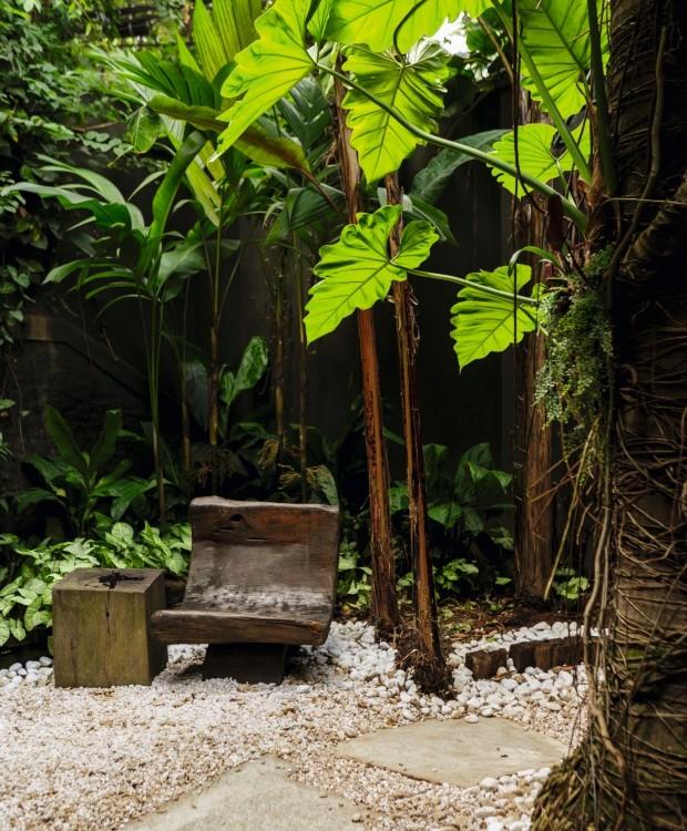 Entrada. Como o jardim da frente não pega muito sol, o paisagista investiu em espécies de meia-sombra – singônios, helicônias e guaimbê-da-folha-ondulada – e na forração com seixos (Foto: Edu Castello / Editora Globo)