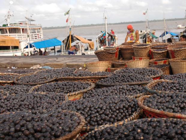 Feira do açaí é um dos pontos mais procuradores por turistas e consumidores no mercado Ver-o-peso, em Belém (Foto: Divulgação/ Elivaldo Pamplona/Prefeitura Municipal de Belém)